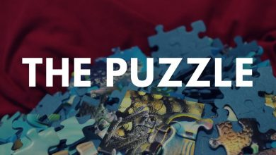 Photo of The Puzzle Episode 25 – finale
