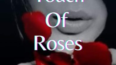 Photo of A Little touch of roses episode 8